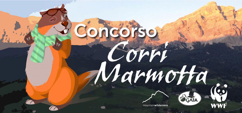 """<p><strong>Grazie al <a target=""""_blank"""" href=""""https://www.innovet.it/azienda/concorso-corri-marmotta/"""">documentario &ldquo;Corri Marmotta&rdquo;</a>, voluto e prodotto da <a target=""""_blank"""" href=""""https://www.innovet.it/"""">Innovet</a> per la regia di Carlo Alberto Pinelli</strong>,&nbsp;durante l&rsquo;anno appena trascorso si &egrave; parlato del <strong>tema della caccia in deroga alle marmotte</strong>: protette da una legge nazionale ma la cui caccia &egrave; autorizzata dalla provincia di Bolzano. <strong>Al documentario si &egrave; aggiunto un <a target=""""_blank"""" href=""""https://www.innovet.it/azienda/concorso-corri-marmotta/"""">omonimo concorso</a></strong>&nbsp;che ha voluto stimolare il dibattito, chiamando tutti gli appassionati di fumetto a realizzare un&rsquo;opera destinata a potenziare e sviluppare la salvaguardia delle sentinelle delle dolomiti, le marmotte. <strong>I lavori realizzati saranno visibili durante la cerimonia di premiazione con una mostra digitale appositamente allestita</strong>. I lavori pervenuti&nbsp;verranno valutati dalla commissione composta da Alda Miolo (critico d&rsquo;arte), Riccardo Mazzoni (vice direttore di WOW Spazio Fumetto), Luigi F. Bona (presidente della Fondazione Franco Fossati e direttore di WOW Spazio Fumetto) e Antonio Marangi (direttore di <a target=""""_blank"""" href=""""https://sbamcomics.it/"""">Sbam! Comics</a>). <strong>In occasione della premiazione verr&agrave; proiettato anche il documentario &quot;Corri Marmotta&quot;</strong>.</p>"""